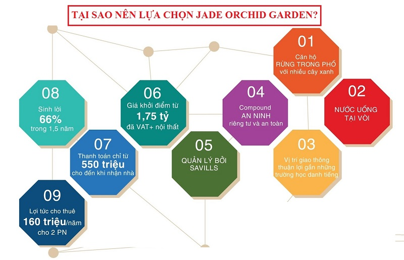 the jade orchid co nhue 24