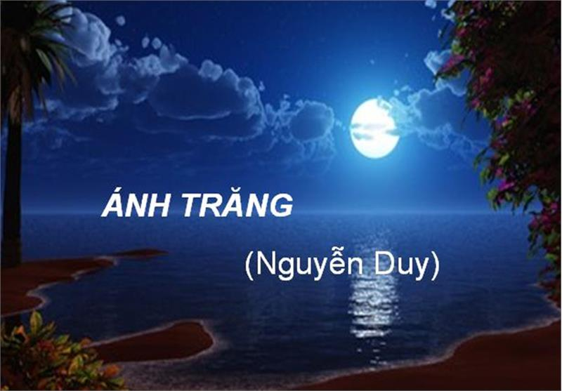Read more about the article Ánh trăng