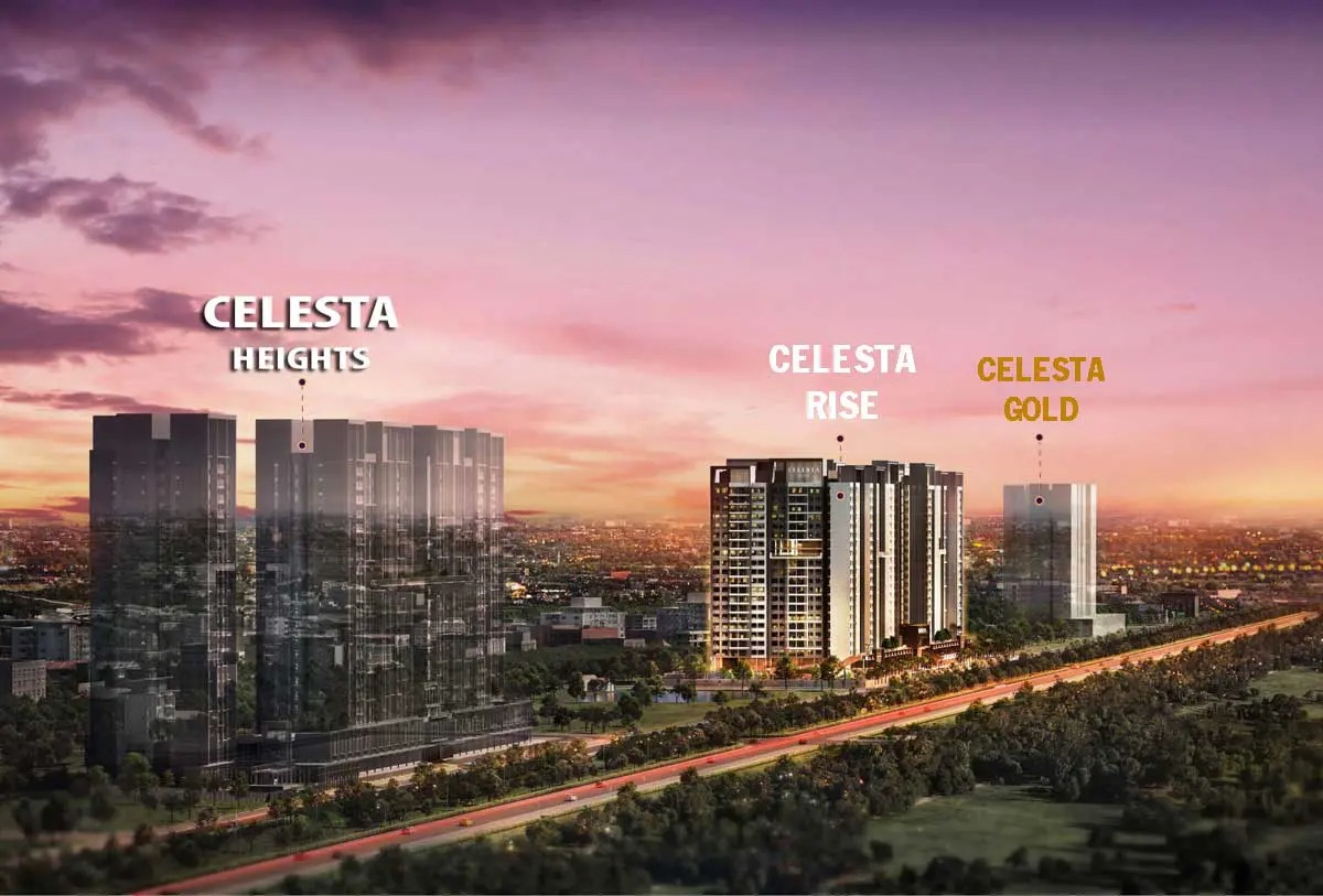 Read more about the article Celesta Gold
